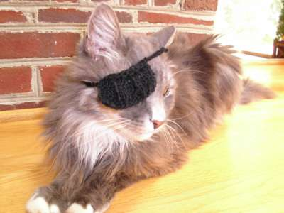 Kitty with an eye patch