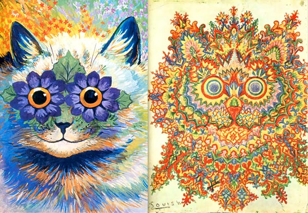physchedelic cat